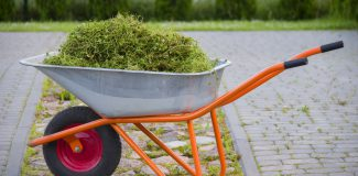 Wheelbarrow With Garden Waste On A Lawn